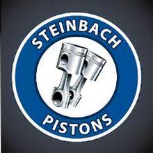 Steinbach Pistons logo