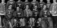 1913–14 Toronto Hockey Club season