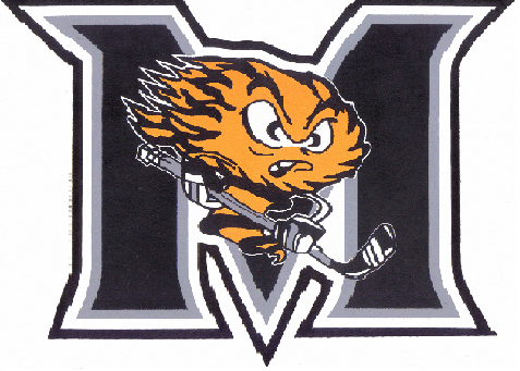 File:Fort Erie Meteors.png