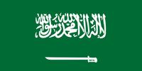 Saudi Arabia men's national ice hockey team