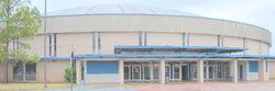 Coliseum building 600x200