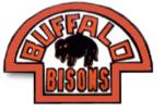 Buffalo bisons 1933-34