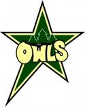 Minnesota Owls logo