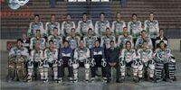 2001-02 Serie A season