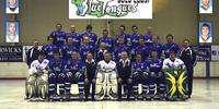2008 AIHL season