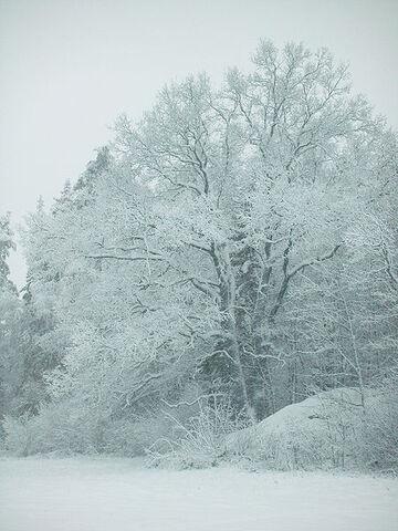 File:Tumba, Sweden.jpg