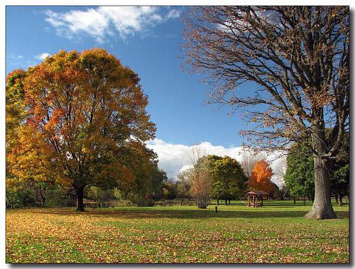 File:Elmira, Ontario.jpg