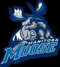 ManitobaMoose 2015
