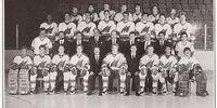 1984–85 AHL season