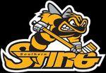 Southern-sting-logo
