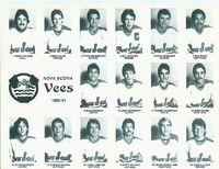 83-84NSVoy