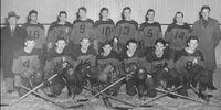 1948-49 VSHL Season