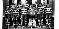 1928-29 Saskatchewan Senior Playoffs