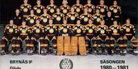 1980-81 Elitserien season