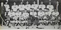 1965-66 QOAA Season