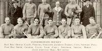 1929-30 Intermediate Intercollegiate