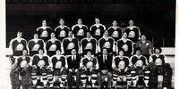 1978–79 AHL season