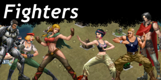 Wiki fighters
