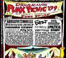 Drumacanoo Punx Picnic