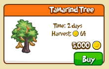 Tamarind tree shop