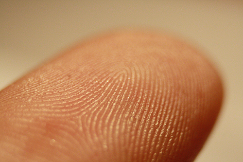File:Fingerprints00a.jpg