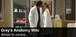 File:Spotlight-greysanatomy-20131006-255-it.jpg
