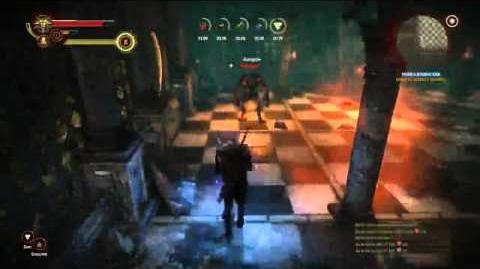 Witcher 2 Operator Vran Guardian on Hard