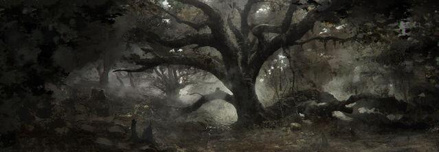 File:Tw3 concept art dark forest.jpg