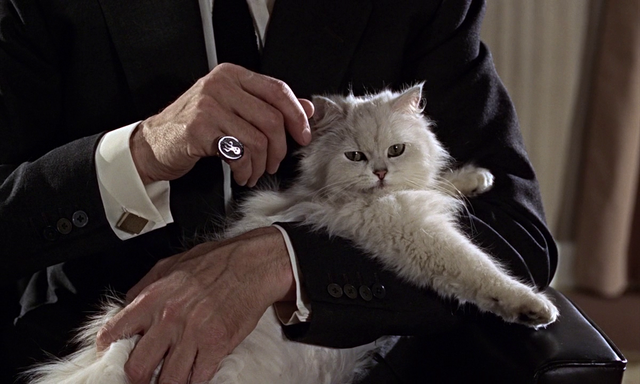 File:Blofeld FRWL.png