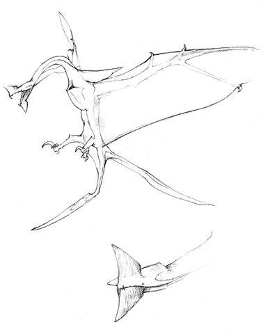 File:Avatar-leonopteryx-studies1.jpg