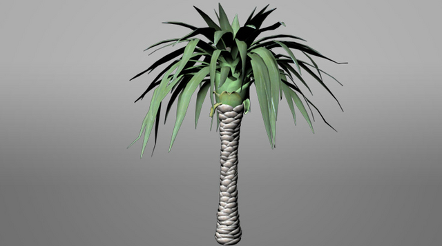 File:Pandora ROVR Beanstalk Palm.png