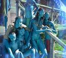 Schule des Avatar-Programms