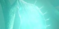 Bladder Lantern