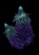 Spartan Bioluminescence