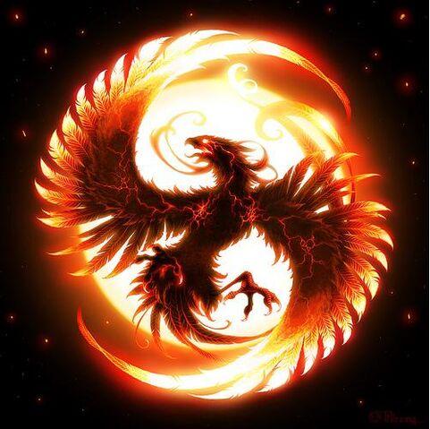 File:Firecirclephoenix.jpeg.jpg