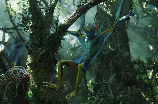 File:Avatar 13.jpg
