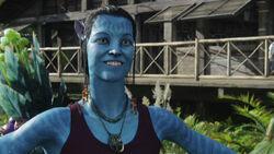 Graces avatar