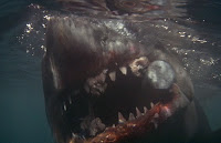 Great White Shark from Jaws 9