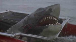 Jaws2 01