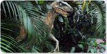 Raptor10.jpg