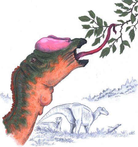 File:Muttaburrasaurus by patriatyrannus.jpg