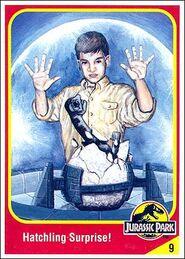 Tim murphy collector card.jpg
