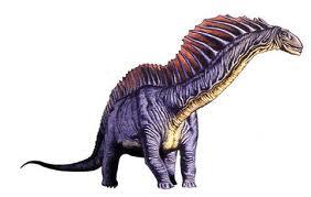 File:Amargasaurus.jpg