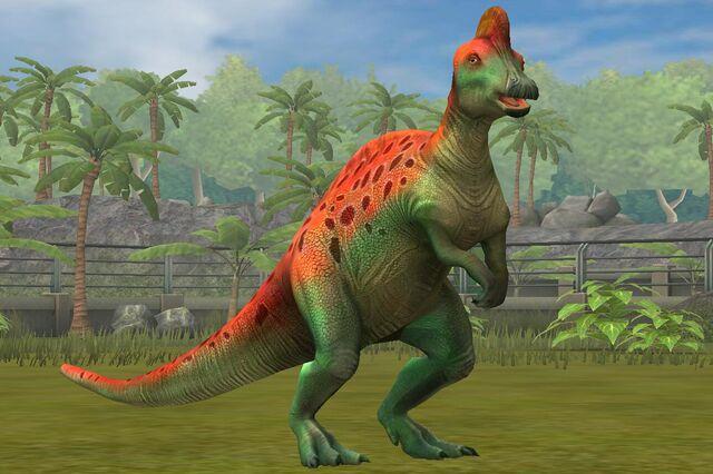 File:Corythosaurs Casuarius (72).jpg