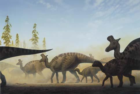 lambeosaurus jpwiki fandom powered by wikia