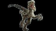 Jurassic world velociraptor v3 by sonichedgehog2-da77482