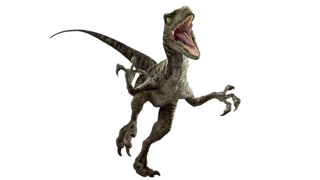 File:Jurassic world velociraptor v3 by sonichedgehog2-da77482.png