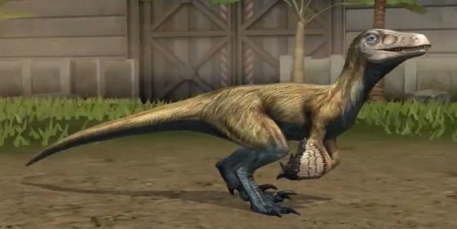 Pyroraptor Jurassic Park Wiki Fandom Powered By Wikia