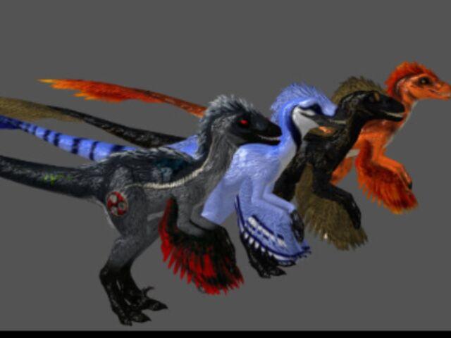 File:Featheredraptor11.jpg