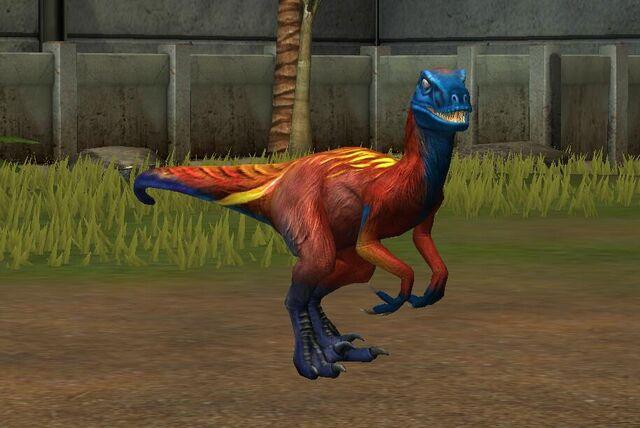 File:Utahraptor Oweni (76).jpg